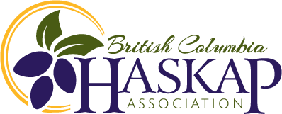 British Columbia Haskap Association Logo Design