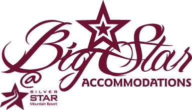 Big Star Accommodations Logo Design