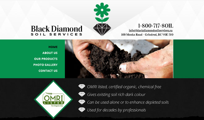 blackdiamondsoilservices.ca