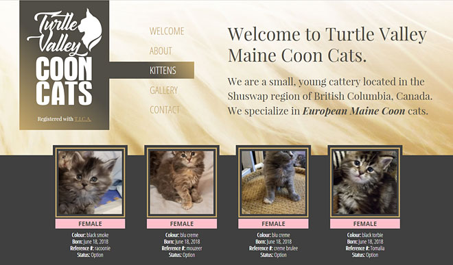 mainecoons.ca